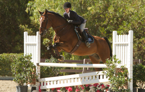 Horseback Riding Not Too Dangerous, Says Equestrian Team