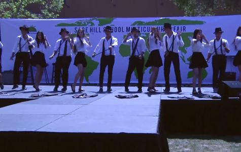 Multicultural Fair 2015 Video