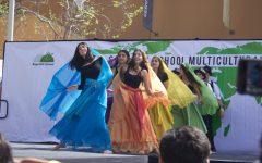 Multicultural Fair 2017