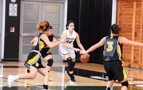 Our Girls' Basketball Season in a Flash