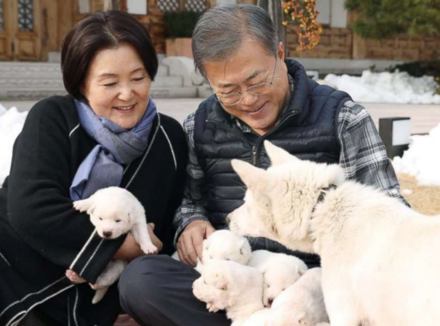 President Moon Jae-in and the first lady with their dogs sent from North Korea President Kim Jong Un