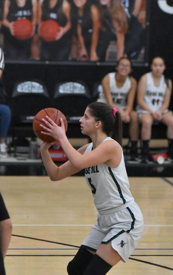 Girls' Basketball Makes Playoffs in Great Season